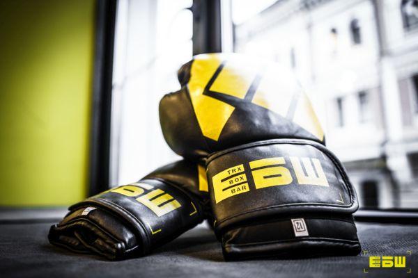 Боксерские перчатки ЕБШ